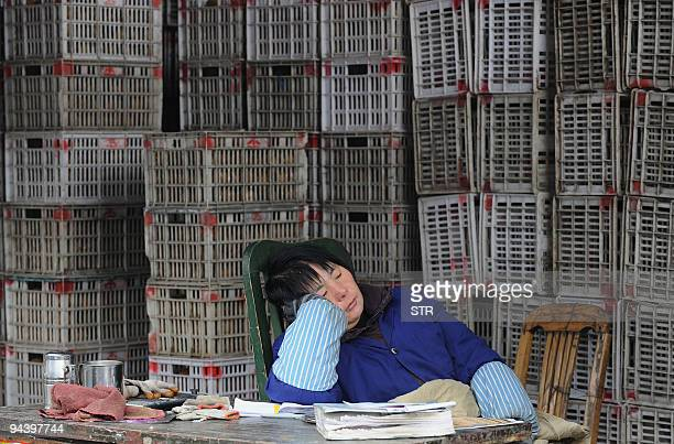 A vegetable seller rests beside her stock at a market in Hefei in eastern China's Anhui province on December 13 2009 China said it had ended an...