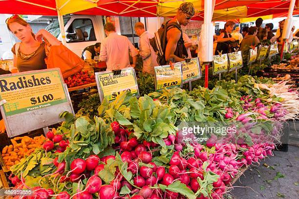 Vegetable stall at the Greenmarket in Union Square New York City USA
