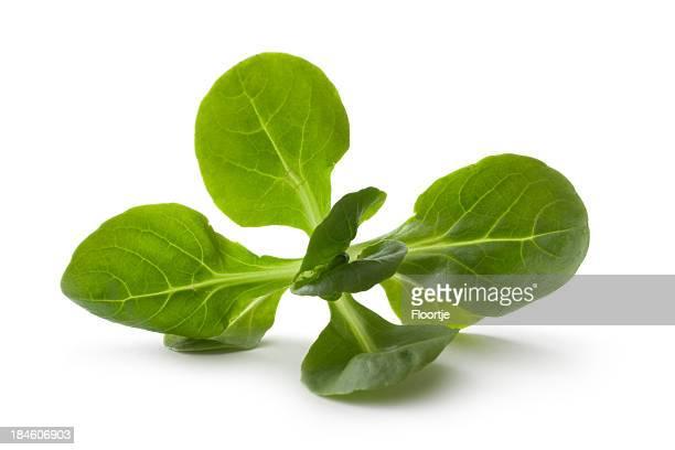 Légumes:  Mâche