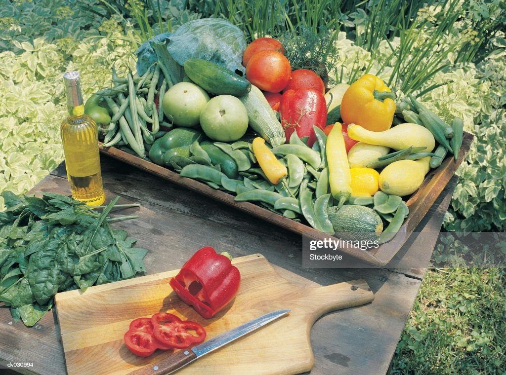 Vegetables from the Garden : Stock Photo