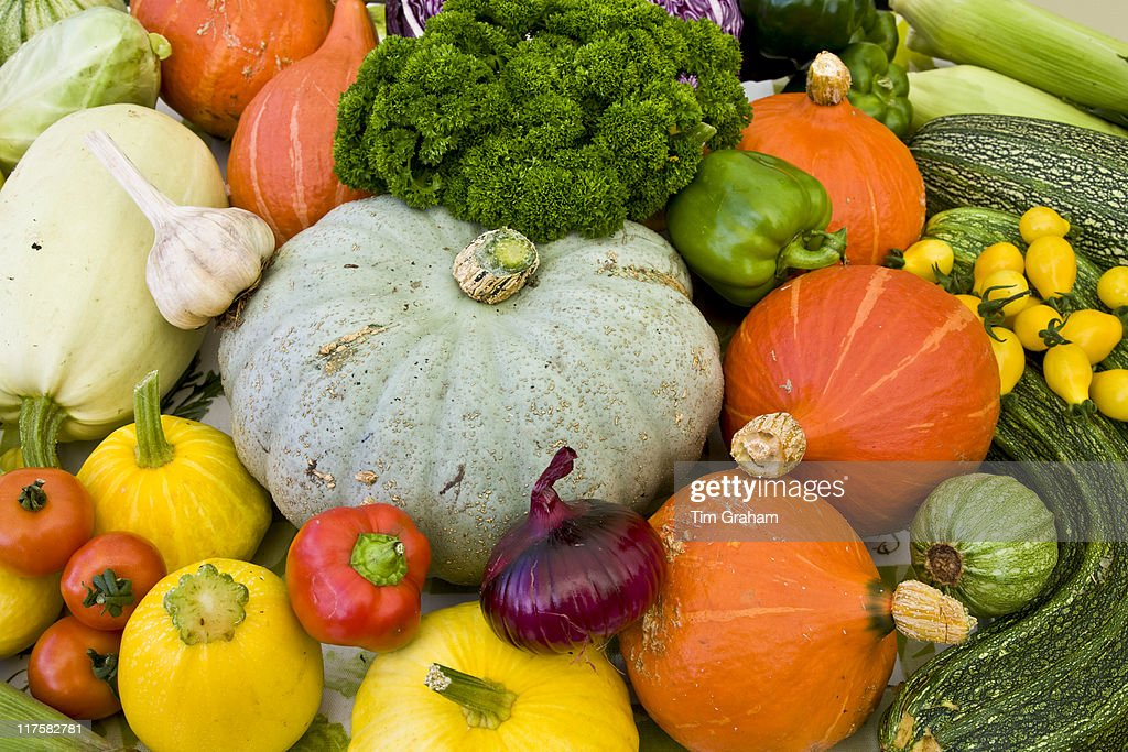 Vegetables on sale at farmers market in Devon England Vitaminrich onions garlic squash marrow tomatoes parsley pepper marrow leeks