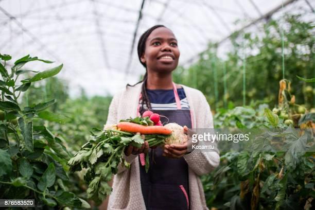 Gemüse wie Karotten, Sellerie und Meerrettich sind einmal die meisten gesünder