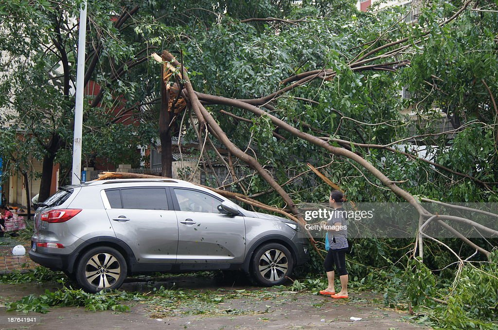 A vehicle is damaged by fallen trees on November 11, 2013 in Sanya, China. Typhoon Haiyan, which left a trail of destruction in the Philippines, weakened into a tropical depression and brought gales and rainstorms to South China on Sunday.