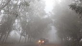 Vehicles moved through a fog covered road during a cold and foggy morning on December 18 2014 in Jammu India Fog and mist continued to affect normal...