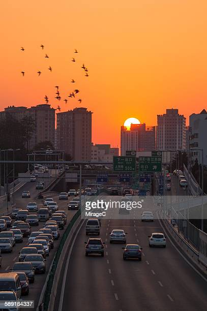 Vehicles on freeway during sunset in Qingdao