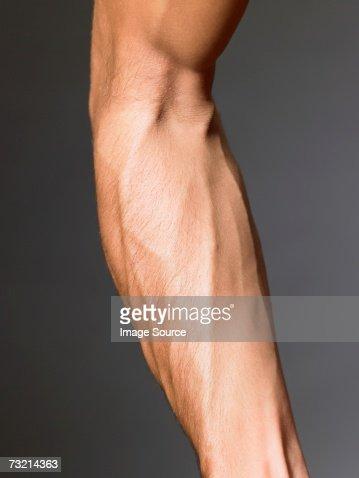 Veins on a mans arm