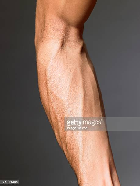 Veins on a mans arm