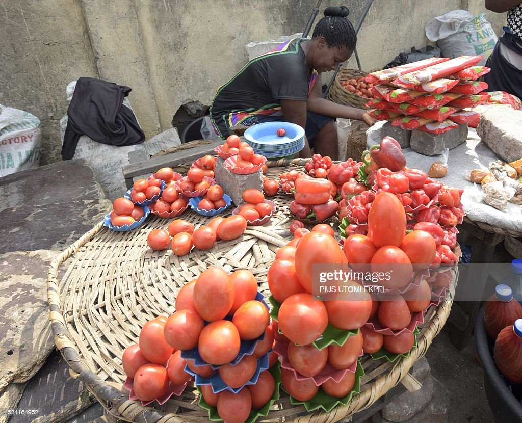 A vendor arranges tomatoes on display in the Obalende district of Lagos, on May 25, 2015. Tomato prices in Nigeria have been steadily climbing for months, caused by unrest in northern and central states where the crop is grown and this has affected farmers' ability to plant and harvest. The effect of price rises and shortages are adding further hardship to Nigerians already struggling with a lack of fuel for cars and generators, power outages, and spiralling inflation. / AFP / PIUS