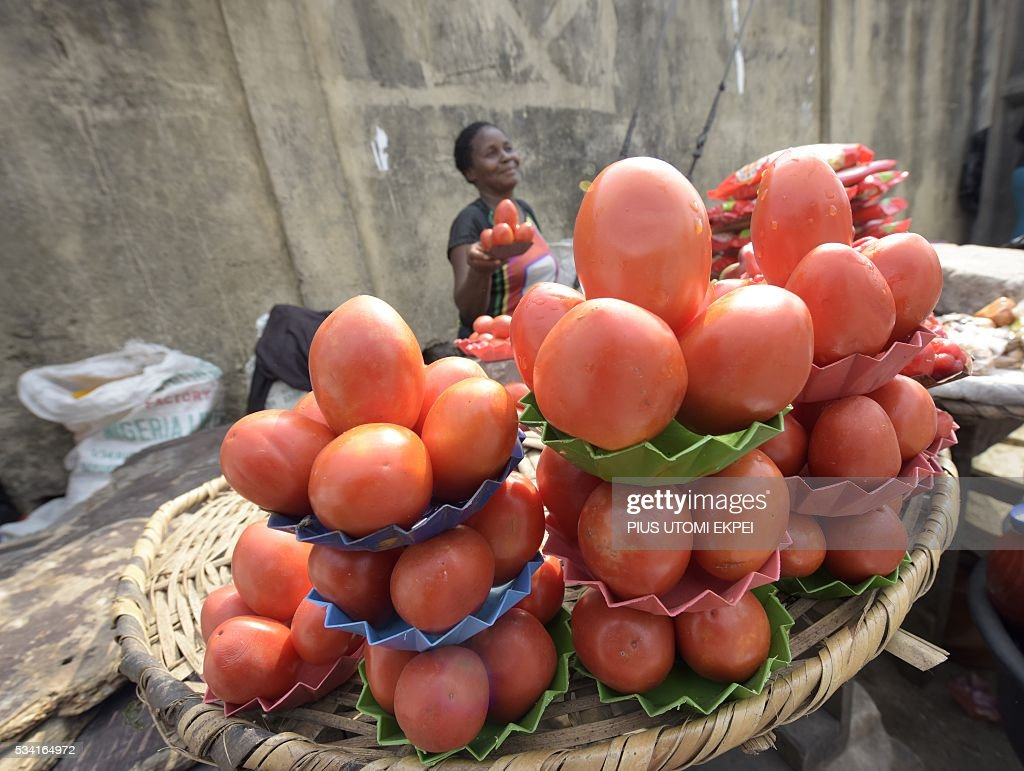 A vendor hold a tray of tomatoes for sale in the Obalende district of Lagos, on May 25, 2015. Tomato prices in Nigeria have been steadily climbing for months, caused by unrest in northern and central states where the crop is grown and this has affected farmers' ability to plant and harvest. The effect of price rises and shortages are adding further hardship to Nigerians already struggling with a lack of fuel for cars and generators, power outages, and spiralling inflation. / AFP / PIUS