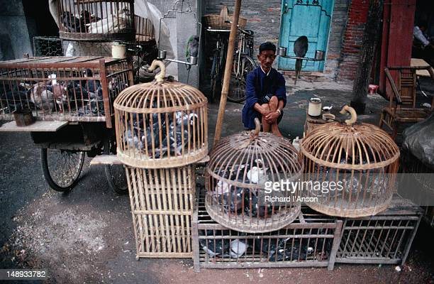 A vendor selling birds at a street stall.