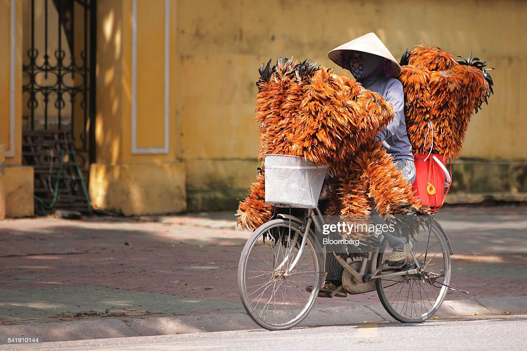 A vendor selling feather brooms rides a bicycle along a street in Hanoi Vietnam on Sunday June 19 2016 Vietnam is scheduled to release finalized...
