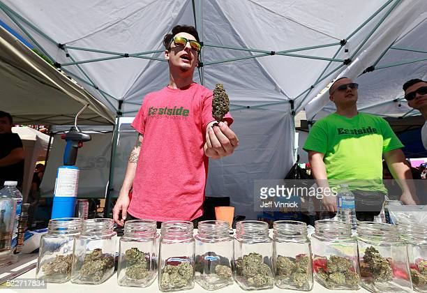 A vendor sells pot as thousands of people gather at 4/20 celebrations on April 20 2016 at Sunset Beach in Vancouver Canada The Vancouver 4/20 event...