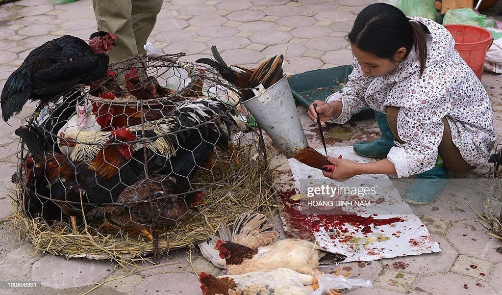 A vendor slaughters a chicken for a customer as Vietnamese do last-minute shopping ahead of the Lunar New Year, known in Vietnam as 'Tet', in downtown Hanoi on February 7, 2013. Vietnamese will have a nine-day long Tet holiday this year, the longest ever decided by the Vietnamese government. AFP PHOTO / HOANG DINH Nam