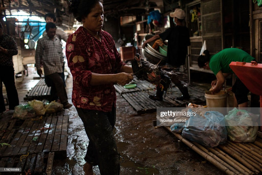 A vendor takes a duck to be slaughtered at the Orussey Market in central Phnom Penh on August 25, 2013 in Phnom Penh, Cambodia. Cambodia has seen the worst out break of Avian influenza H5N1 since the disease was first identified, so far this year 17 cases have been report, 10 of which have been fatal.