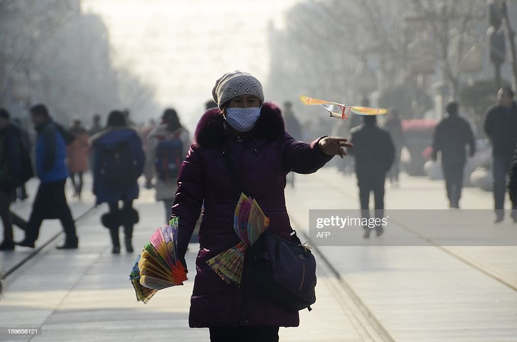 A vendor throws a toy bird along a street as she waits for customers in Beijing on January 18, 2013. China's economy grew at its slowest pace in 13 years in 2012, the government said on January 18, but an uptick in the final quarter pointed to better news ahead for a prime driver of the tepid global recovery.