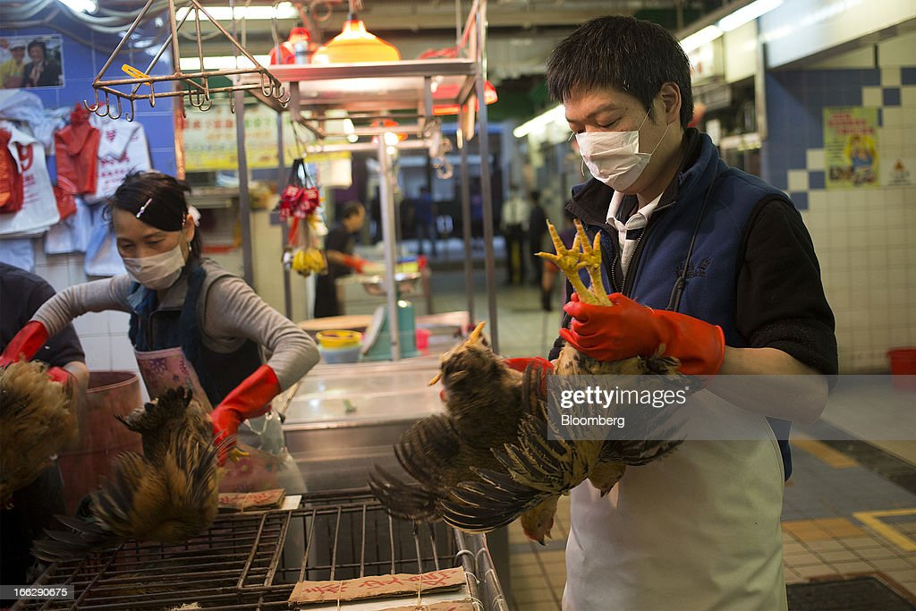 A vendor transfers live chickens to cages at the Kowloon City Market in Hong Kong, China, on Thursday, April 11, 2013. The Hang Seng Index rose 0.8 percent to 22,220.65 as of 1:14 p.m. in Hong Kong, headed for its longest winning streak since March 27. The gauge is close to erasing last week's loss prompted by the outbreak of a new strain of bird flu in China. Photographer: Jerome Favre/Bloomberg via Getty Images