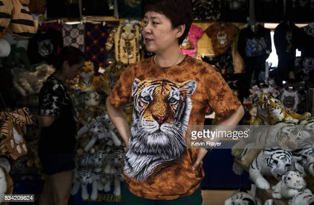 A vendor waits to sell merchandise at the Heilongjiang Siberian Tiger Park on July 5 2017 in Harbin northern China The center is one of two Siberian...
