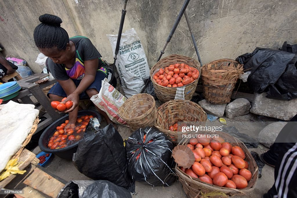 A vendor washes tomatoes in a bucket before putting them on sale in the Obalende district of Lagos, on May 25, 2015. Tomato prices in Nigeria have been steadily climbing for months, caused by unrest in northern and central states where the crop is grown and this has affected farmers' ability to plant and harvest. The effect of price rises and shortages are adding further hardship to Nigerians already struggling with a lack of fuel for cars and generators, power outages, and spiralling inflation. / AFP / PIUS