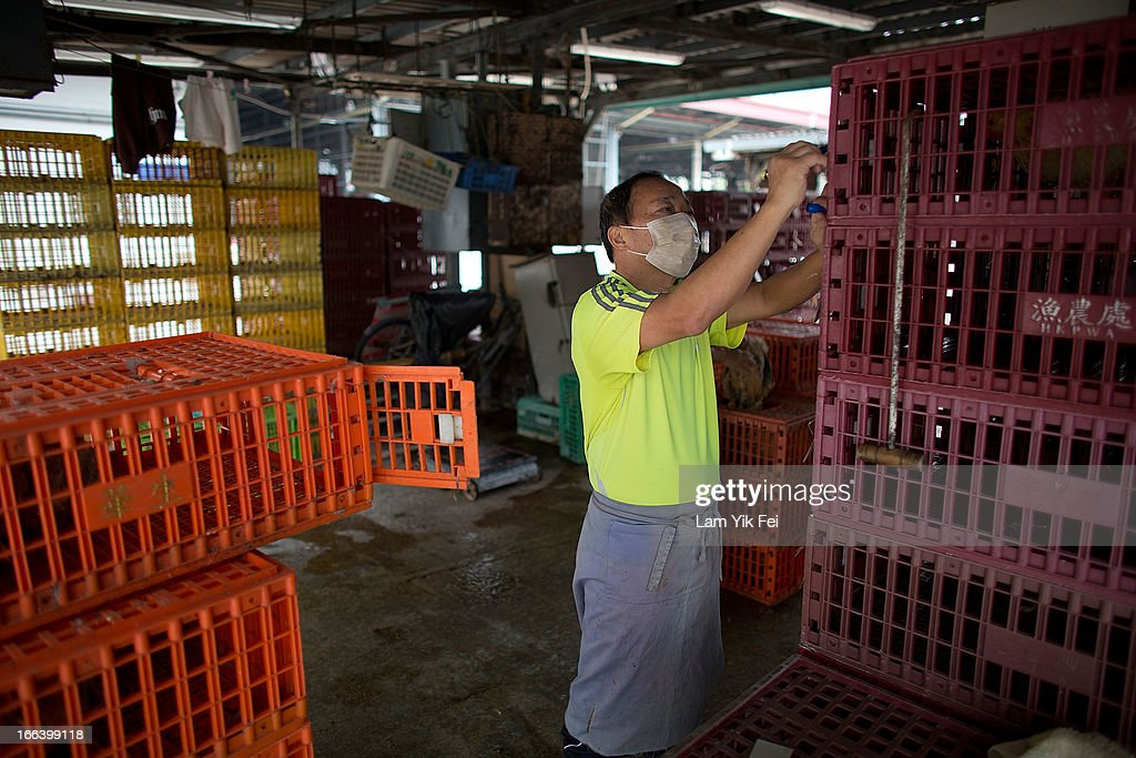 A vendor works at the Wholesale Poultry Market in Cheung Sha Wan on April 12, 2013 in Hong Kong. Local authorities have stepped up the testing of live poultry imports from China to include a rapid test for the H7N9 'bird flu' virus. Measures were put in place as the tenth victim of the influenza strain was confirmed in mainland China yesterday.