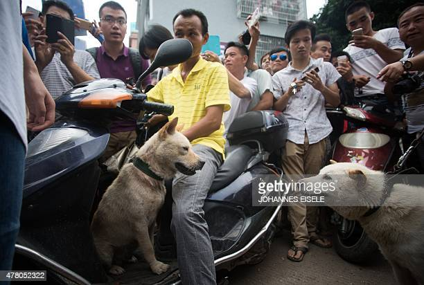 Vendors and bystanders wait for customers to buy dogs at a market in Yulin in southern China's Guangin Yulin in southern China's Guangxi province on...