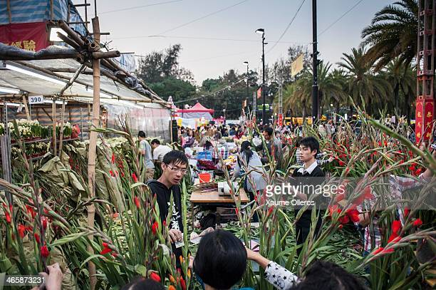 Vendors work on a stand at the Flower Market set up for the Lunar New Year as China prepares for the Year of the Horse at Victoria Park on January 30...