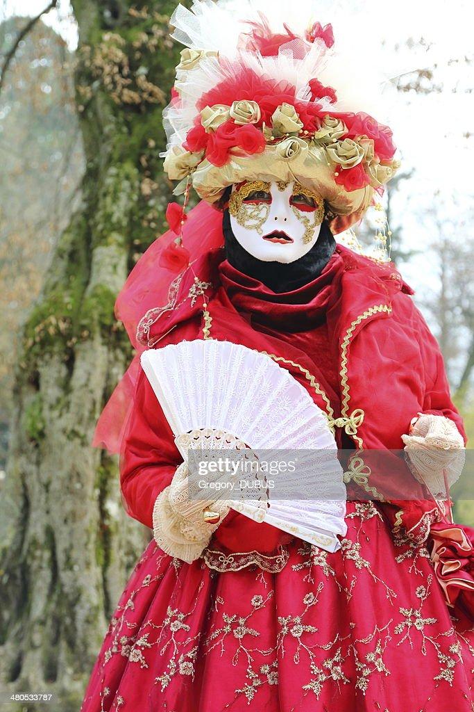Venetian carnival : Bildbanksbilder
