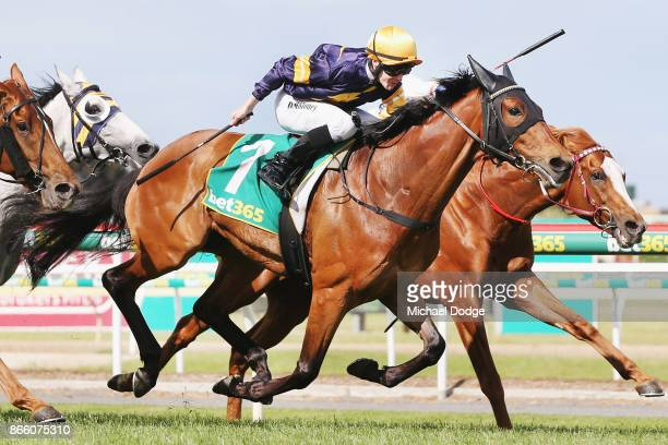 Vengeur Masque ridden by Patrick Moloney wins race 7 the bet365 Geelong Cup ahead of Craig Williams riding Gallic Chieftain during Melbourne Racing...