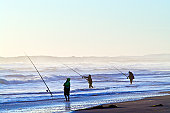 Fishermen try to hook a fish in the waves with long surf fishing rods.