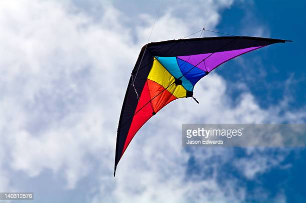 A delta-winged kite flashing primary colours in the summer sky.