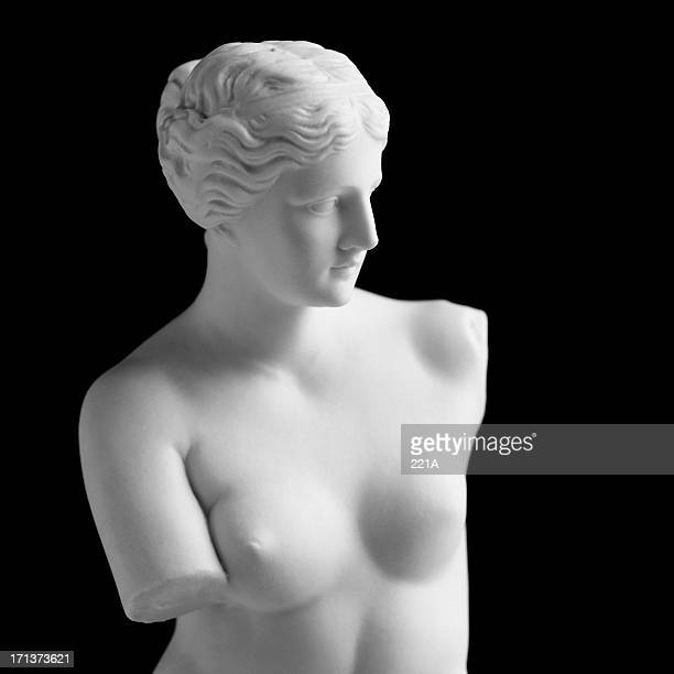Venus de Milo on black