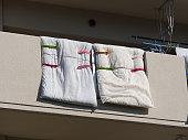 Veranda dried futon
