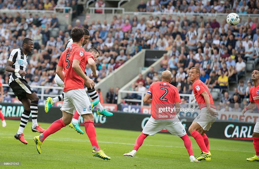 Vernon Anita of Newcastle heads in his goal during the Premier League match between Newcastle United and Brighton & Hove Albion on August 27, 2016 in Newcastle.
