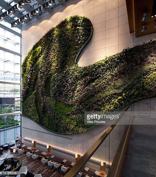 Vertical Garden Above The Reception Rocco Yim China Architect