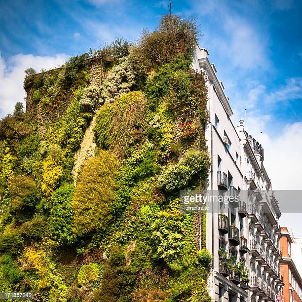 Green stock photos and pictures getty images for Jardin vertical madrid