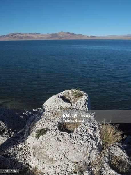 Vertical Image Of Popcorn Rock At Pyramid Lake, Nevada