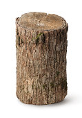 Vertical stump isolated on a white background