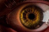 very close up shot of a human brown eye