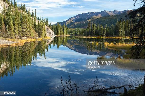 反射の馬蹄形湖では、アラスカデナリ国立公園