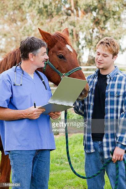 Vet discussing treatment with horse owner