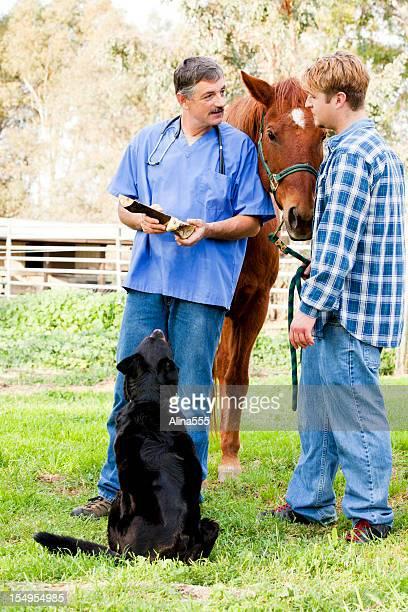 Tierarzt diskutieren Behandlung mit Pferd-Eigentümer