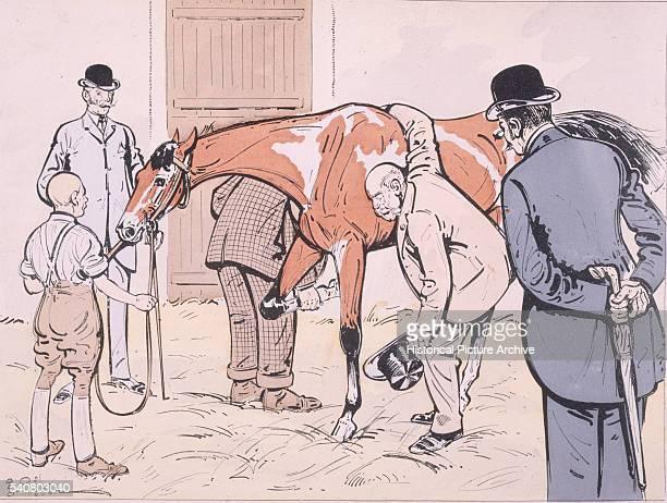 A Vet Examines a Racehorse