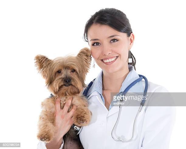 Veterinario sosteniendo un poco de perro