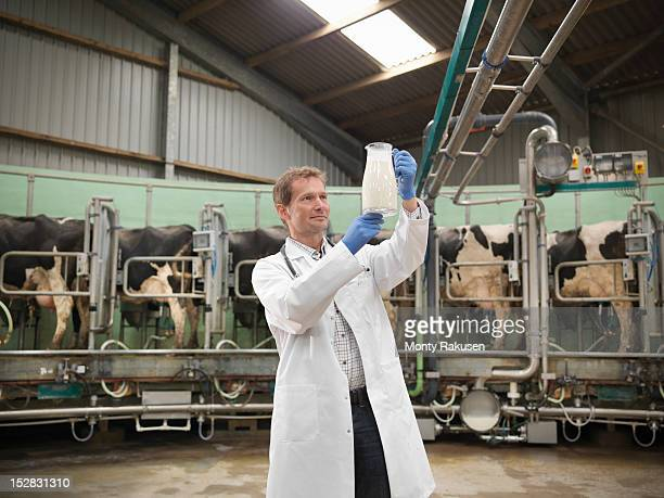 Vet holding up jug of milk for inspection in rotary milking parlour on dairy farm with cows