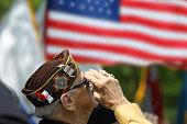 Veteran Salutes the US Flag