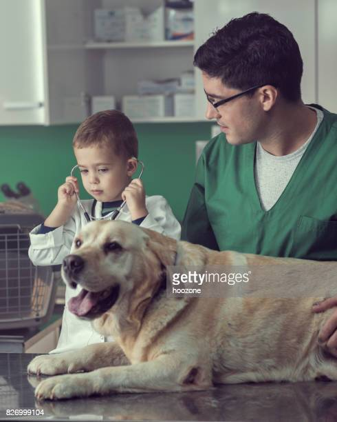 Veterinarian and a Young Boy Examining a Dog Together