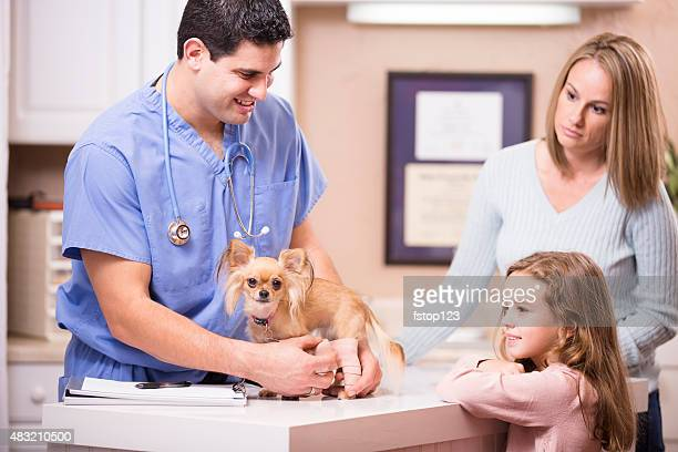 Veterinarian bandages dog's injury as pet owners, family looks on.