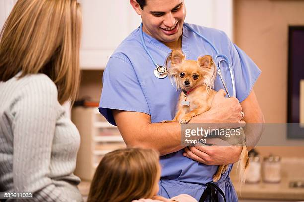Veterinarian holds Chihuahua dog. Pet owners looking on. Clinic.