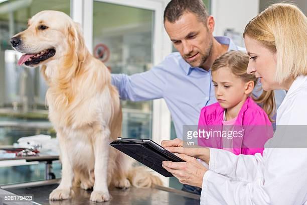 Vétérinaire à l'aide de Tablette numérique