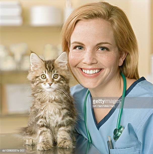 Veterinarian with Maine Coon Kitten, portrait, close-up
