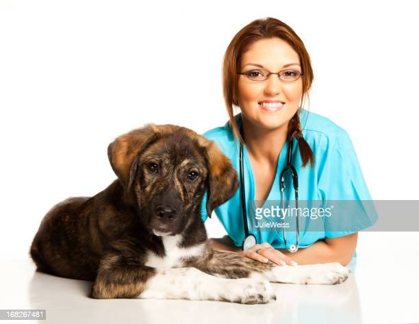 Veterinary technician with brown and white puppy dog